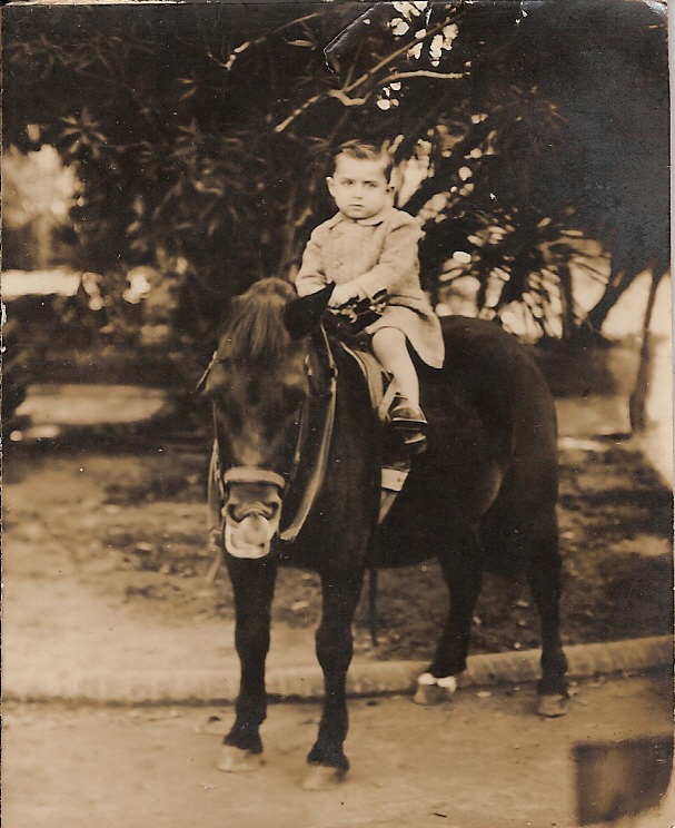 Boy on pony